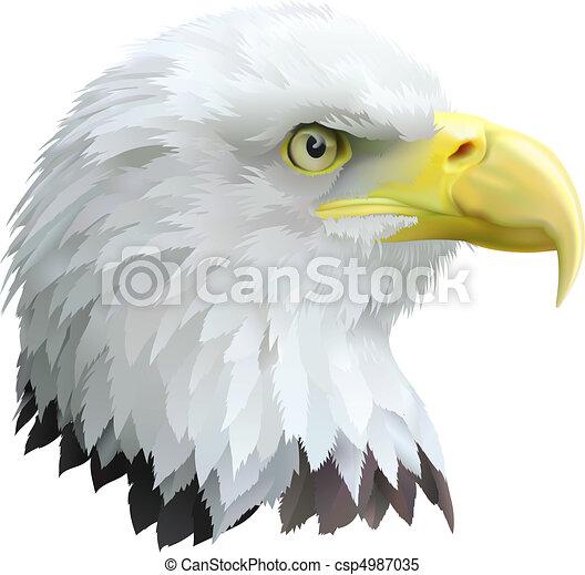 águia - csp4987035