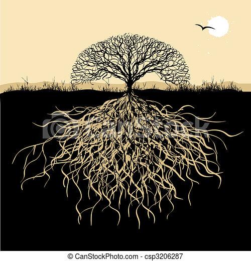 árvore, silueta, raizes - csp3206287