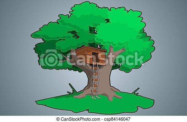 árvore verde - csp84146047