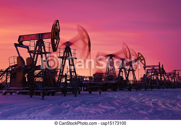 óleo, pumps. - csp15173100