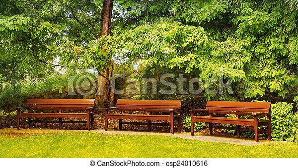 bonito, bancos, solidão, park., serenidade, vazio, conce - csp24010616