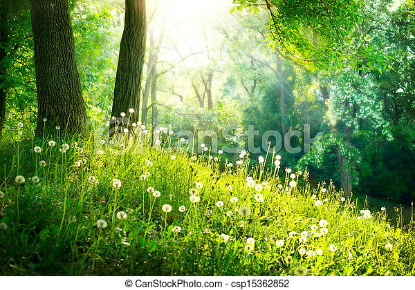bonito, paisagem., primavera, nature., árvores, grama verde - csp15362852
