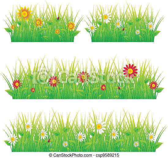 bonito, verão, prado - csp9589215