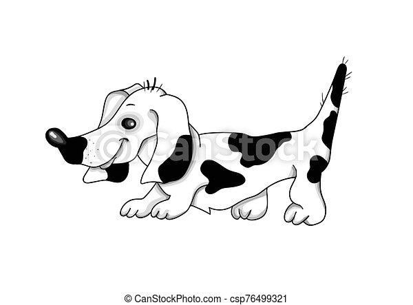branca, experiência., vetorial, cão, illustration., bassê - csp76499321