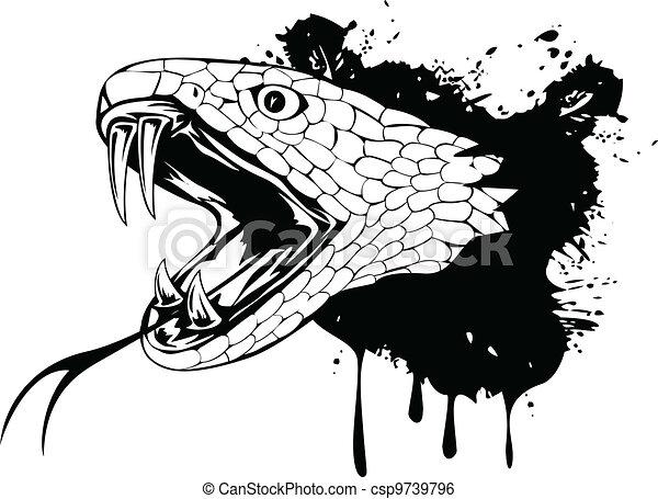 cabeça, cobra - csp9739796
