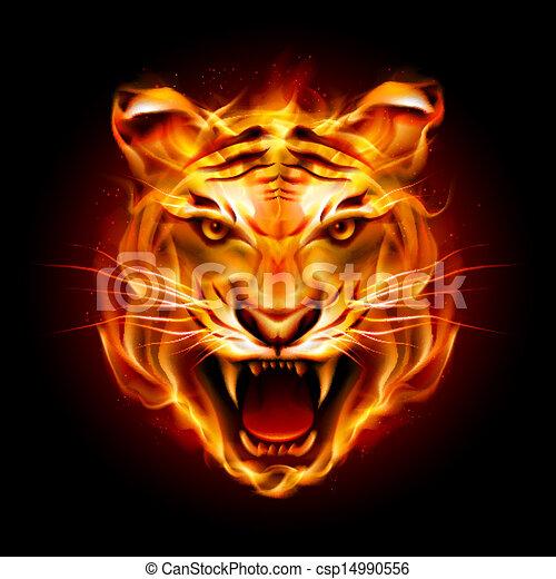 cabeça tigre, chama - csp14990556