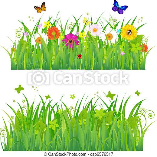 flores, capim, insetos, verde - csp6576517