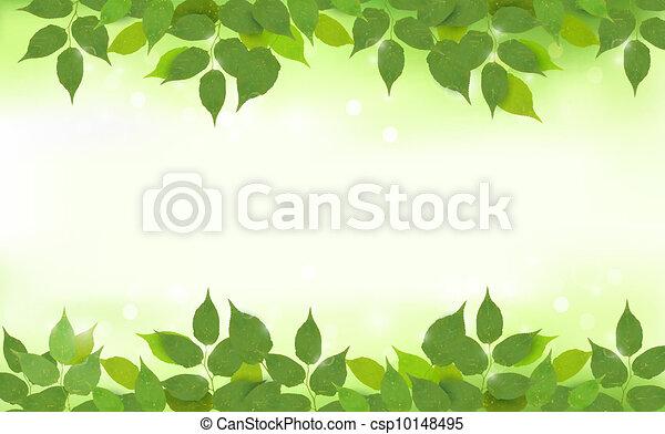 folhas, fundo, natureza, verde - csp10148495