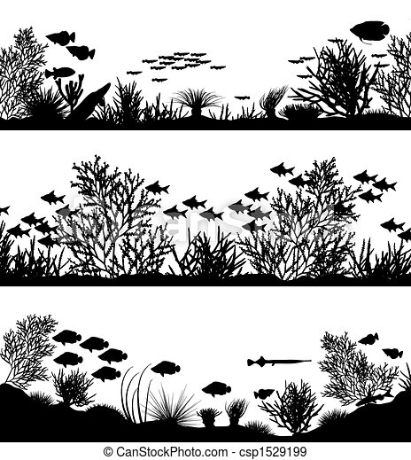 foregrounds, coral - csp1529199