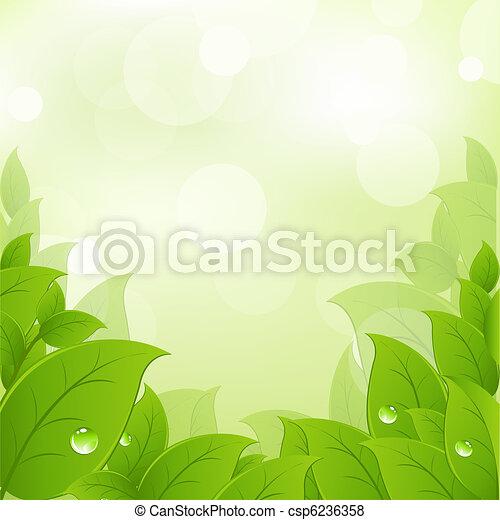 fresco, folhas, verde - csp6236358