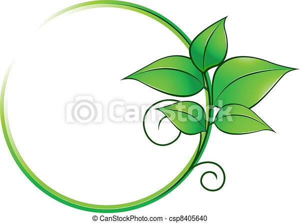 fresco, quadro, verde sai - csp8405640