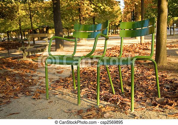 garden., parisian, cadeiras, parque, paris, luxemburgo, paris., outono, frança, típico - csp2569895