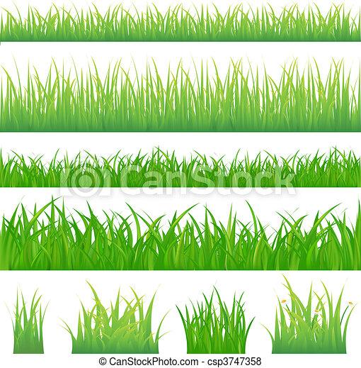 grama verde, fundos, 4, topetes - csp3747358