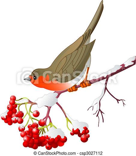 inverno, pássaro - csp3027112