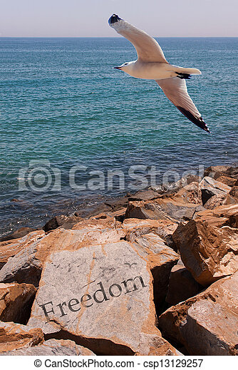 liberdade - csp13129257