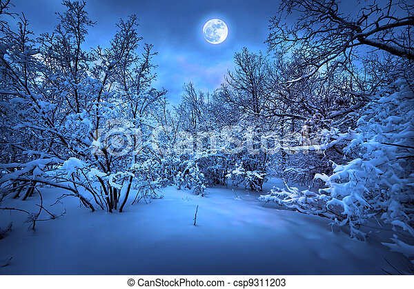 luar, madeira, inverno, noturna - csp9311203