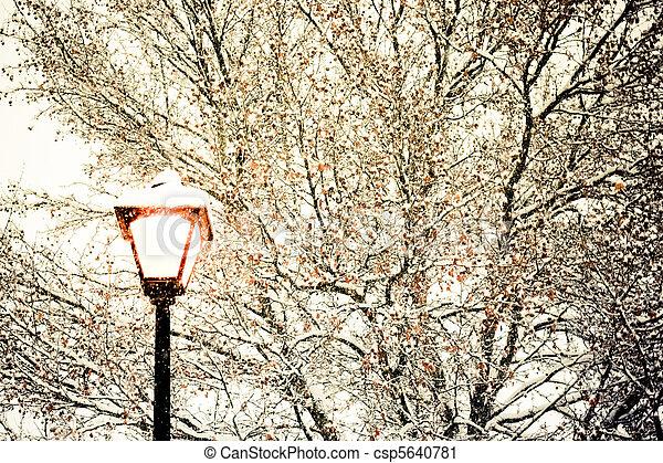 luz, rua, inverno - csp5640781