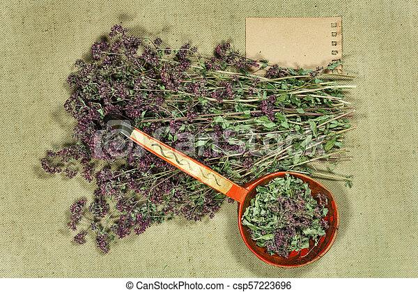 medicina, herbário, oregano., phytotherapy, secos, medicinal, herbs. - csp57223696