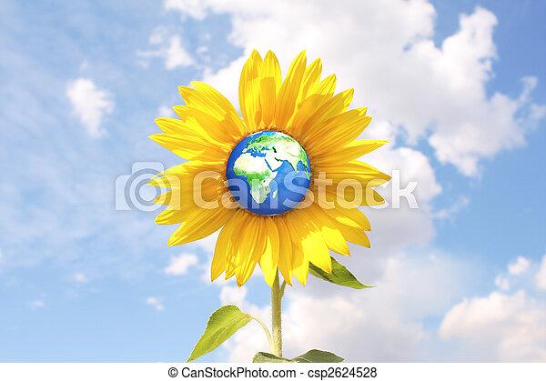 meio ambiente - csp2624528