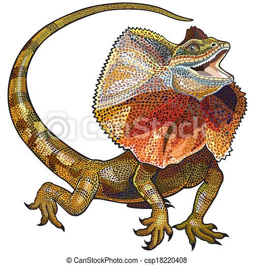 necked, lagarto, frill - csp18220408