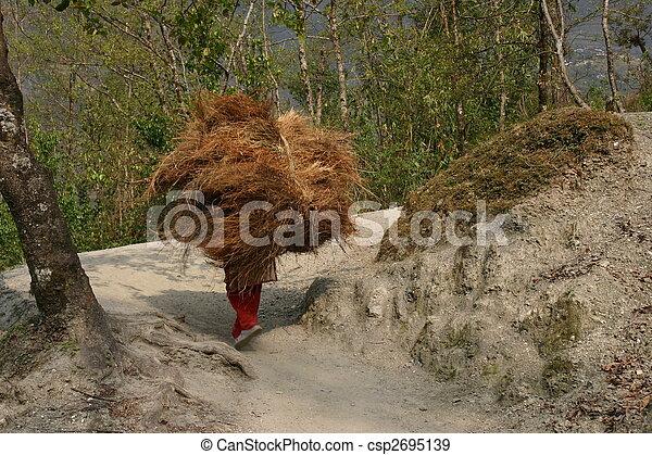 nepal, zeladores - csp2695139