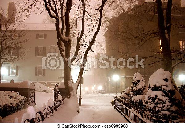 noturna, inverno - csp0983908