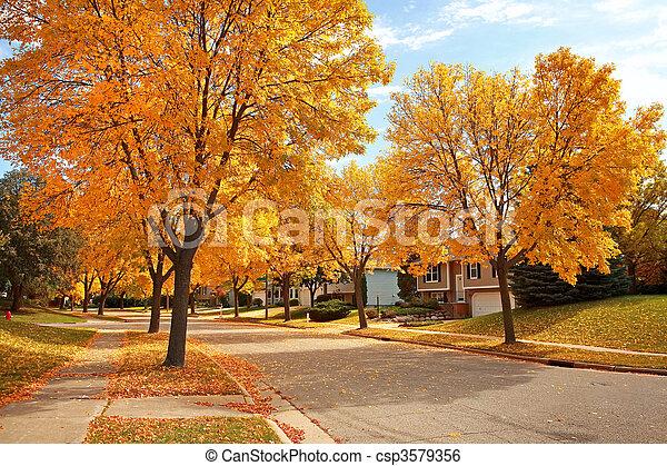 outono, vizinhança residencial - csp3579356