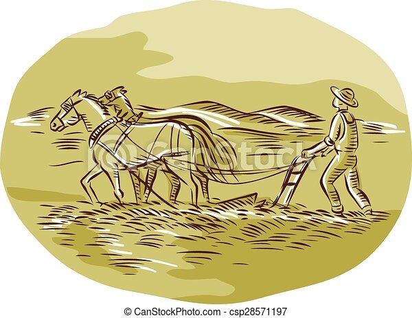 oval, cauterizando, agricultor, arar, campo, cavalos - csp28571197