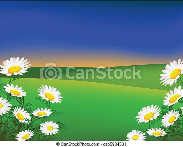 paisagem verde - csp5934531