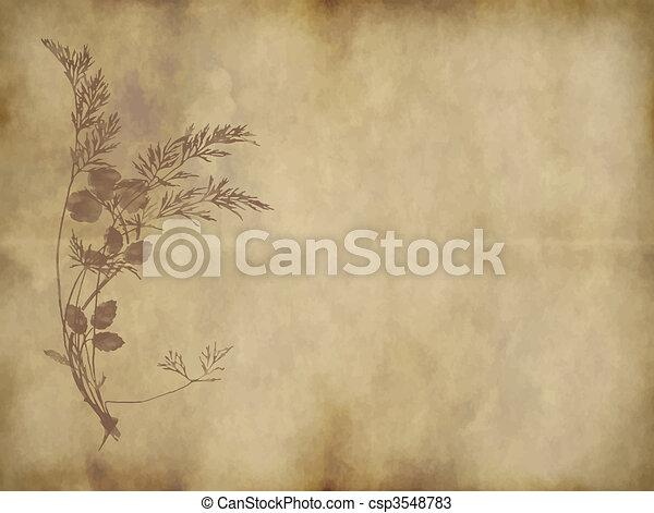 papel, antigas, ou, pergaminho - csp3548783