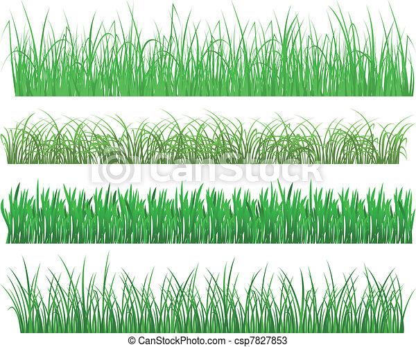 plantas, capim, verde - csp7827853