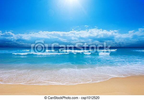 praia, paraisos  - csp1012520