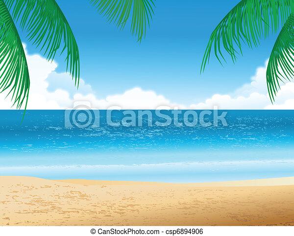 praia tropical - csp6894906
