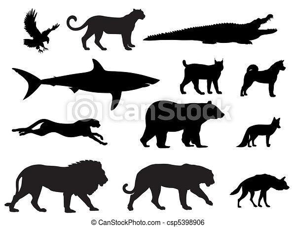 predadores - csp5398906