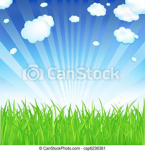 primavera, capim - csp6236361