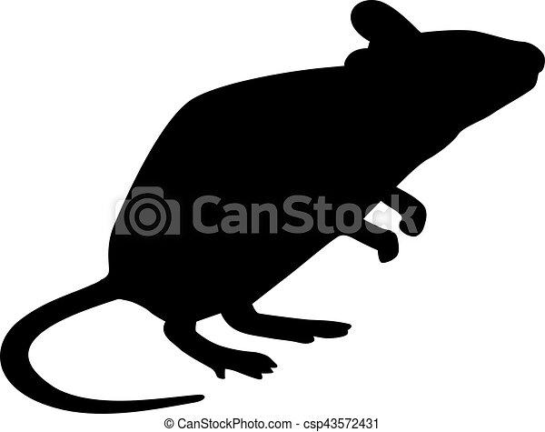 rato, silueta, ficar - csp43572431