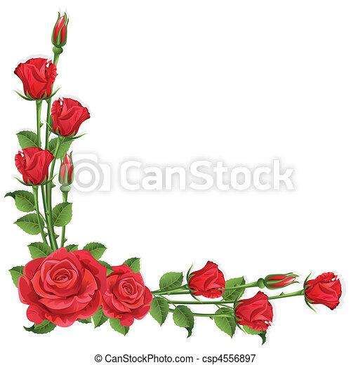 rosas - csp4556897