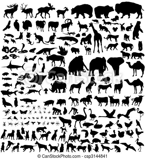silhuetas, animal, cobrança - csp3144841