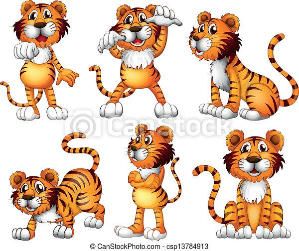 tiger, posições, seis - csp13784913
