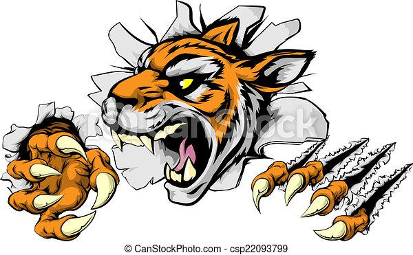 tiger, zangado, esportes, mascote - csp22093799