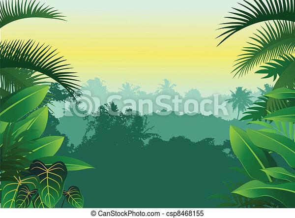 tropicais, selva - csp8468155