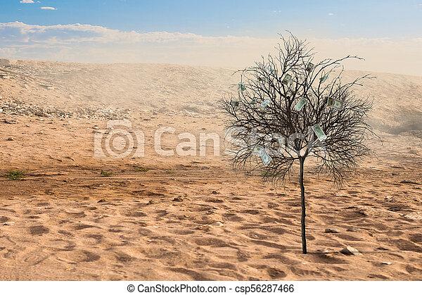 verde, só, árvore, deserto - csp56287466